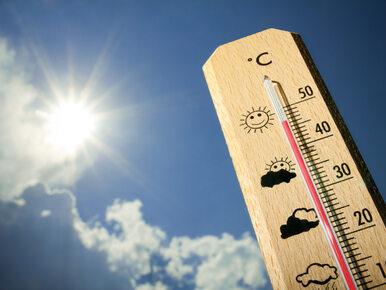 Czwartek będzie ciepły i słoneczny. W sobotę nastąpi załamanie pogody