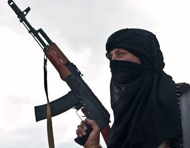 10 liderów dżihadu zabitych. Niektórzy powiązani z zamachami w Paryżu