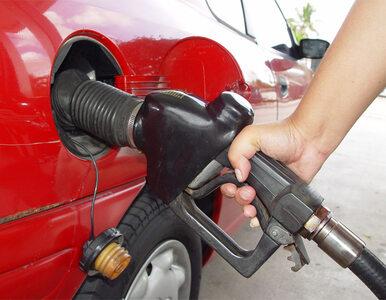 Kierowcy oszukiwani na stacjach benzynowych. Dystrybutory zawyżają ilość...