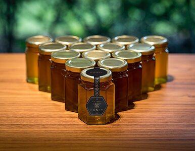Miód od... Rolls-Royce'a? Pszczoły nie zaprzestają produkcji