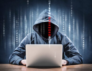 Haker nie taki groźny. Można się ubezpieczyć