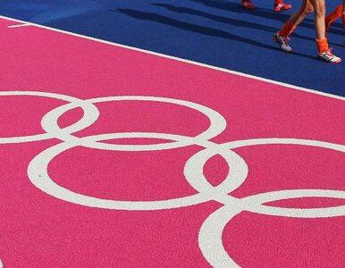 """Olimpijski sędzia zawieszony. """"Miałem duże oczekiwania"""""""