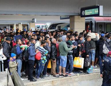 Chorwacja i Słowenia zamykają granice przed imigrantami