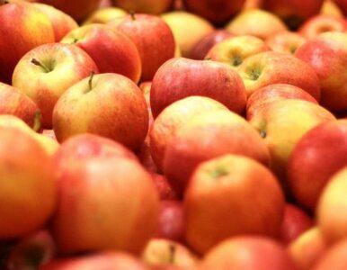 Jabłka poprawią satysfakcję z seksu? Zaskakujące odkrycie naukowców