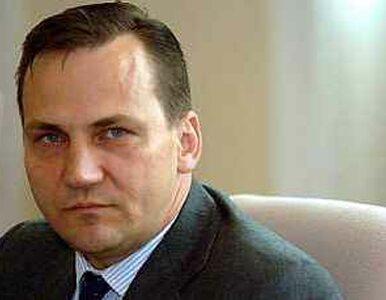 """Janukowycz odznaczył Sikorskiego """"za działalność społeczną"""""""
