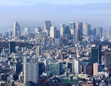 Japonia walczy z koronawirusem. Pomysł na odmrażanie turystyki spodoba...