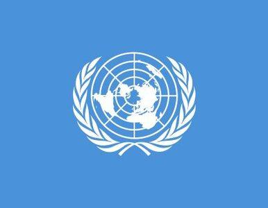 ONZ pomoże głodującym?