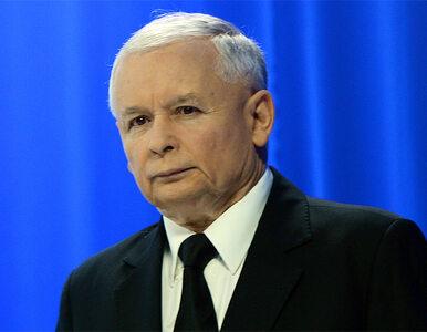 Kaczyński broni Seremeta ws. Amber Gold