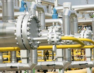 Gazprom poprosił Putina o tańszy gaz dla Ukrainy. Niższe ceny przez...