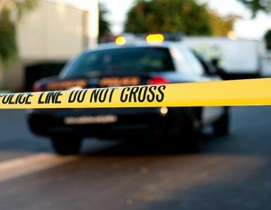 Strzelanina w USA. Nie żyje 7 osób, sprawca zbiegł