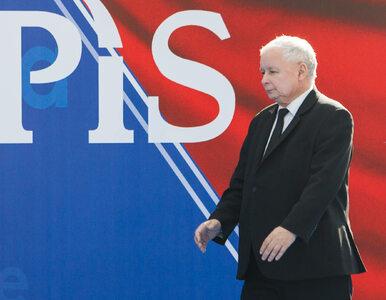 """PiS zadrwił z opozycji w nowym spocie, PSL odpowiada. """"Ej Ptysie, co to..."""
