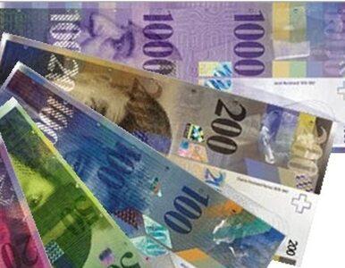 Mucha: zamrożenie kursu franka? To populizm