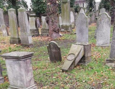 Opole. Przewrócono 15 pomników na zabytkowym cmentarzu. Sprawcami są dzieci