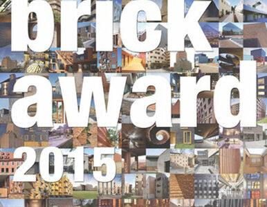 Do 16 lutego można zgłaszać ceramiczne obiekty do Brick Award