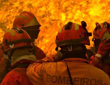 Pożar trawi Portugalię