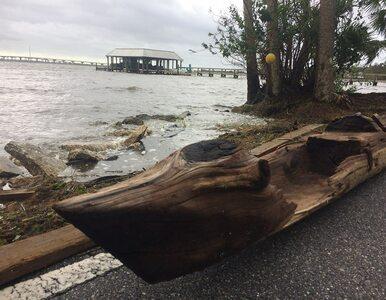 Huragan Irma odsłonił niezwykłe znalezisko. Może mieć setki lat