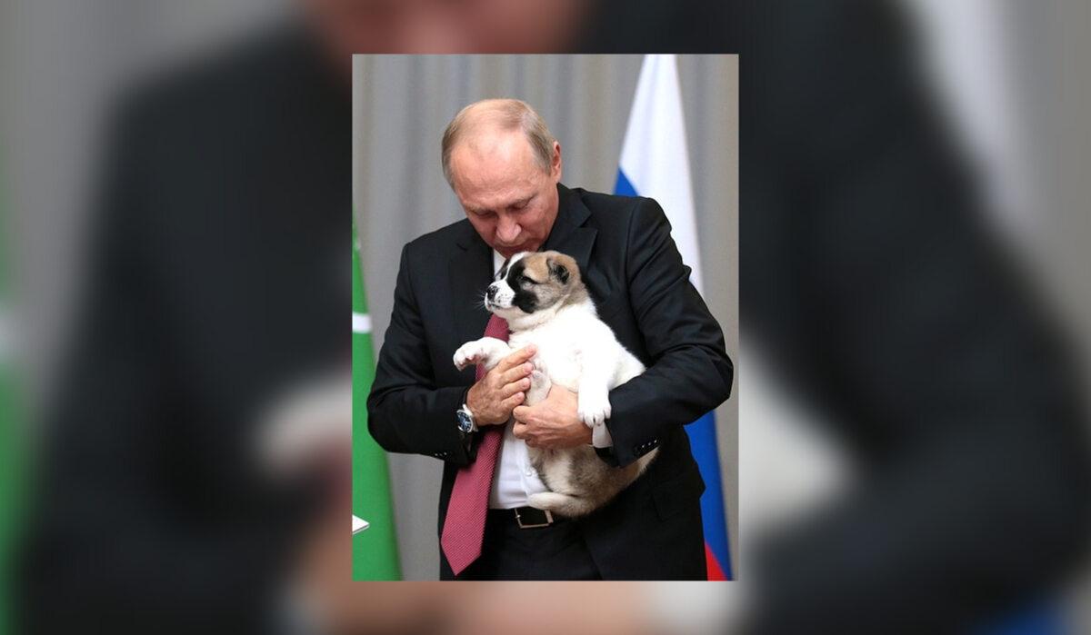 Władimir Putin i Alabaj