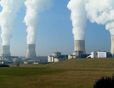 Litwa bez atomu?