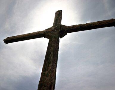 Niemiecki kardynał: nas, Niemców, nie było pod krzyżem