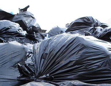 Góra śmieci rozkłada się w centrum Wrocławia