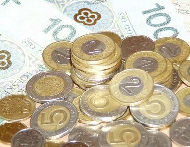 Rolnicy pożyczą pieniądze. Ministerstwo zapłaci
