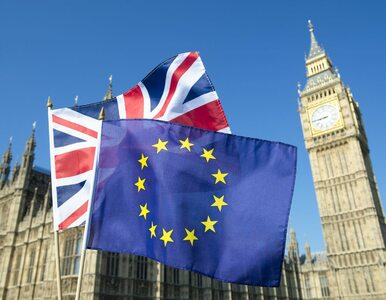 Dziś referendum w sprawie Brexitu. Oto kilka niezbędnych informacji