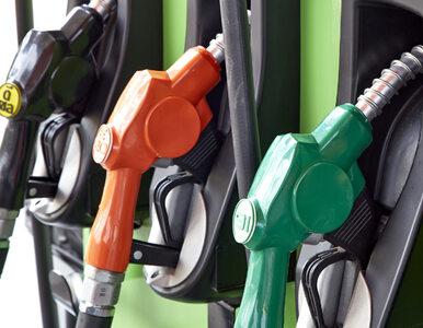 Za paliwo zapłacisz przy dystrybutorze. Kolejne stacje wprowadzają...