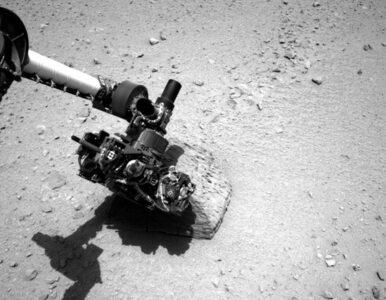 Łazik Curiosity zbadał marsjańską skałę
