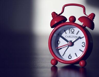 Czy warto robić jednodniowy urlop od diety?