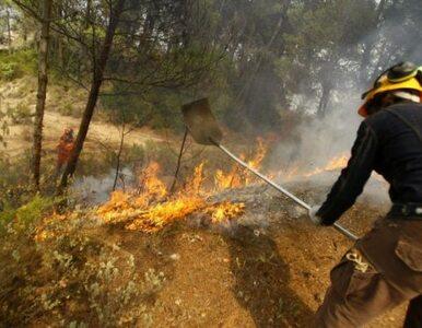 Hiszpanię trawią pożary. Dwóch strażaków nie żyje