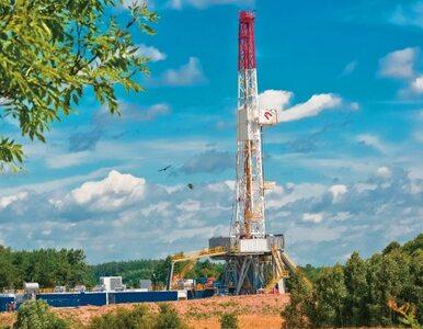 Polscy rolnicy wygrali z gazowym gigantem. Nie będzie poszukiwań gazu...