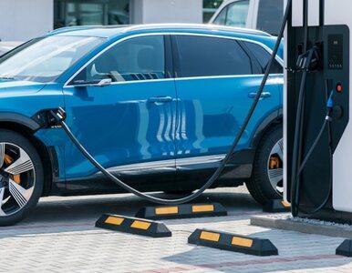 Polski energetyczny gigant wycofuje się z elektromobilności. Dlaczego?