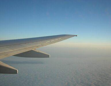 Ryanair chce rozwijać siatkę krajowych połączeń lotniczych