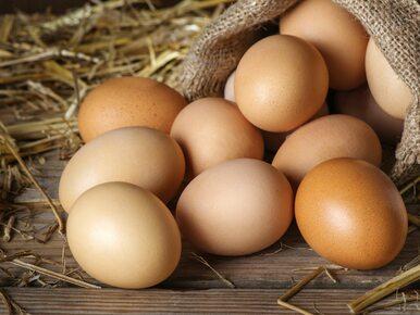 Jajka wycofane z popularnej sieci sklepów. Powodem salmonella