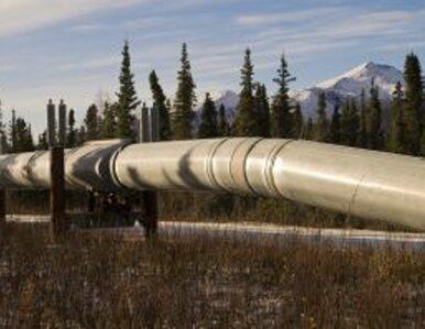 Indie i Katar poszukają razem gazu
