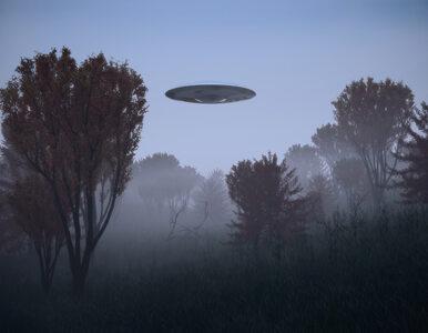 Raporty na temat UFO ujrzą światło dzienne. Każdy będzie miał do nich...