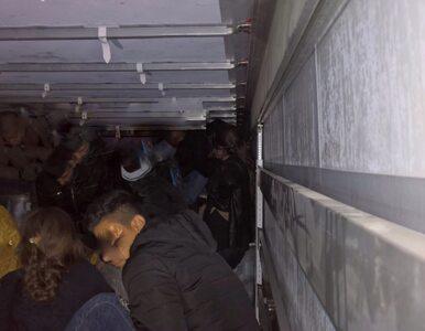 51 migrantów, w tym 17 dzieci. Policja: Wszystko wskazuje na to, że...