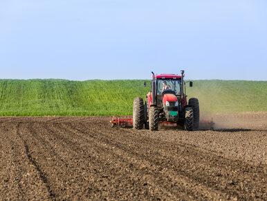 Rolnicy mają 412,5 mln zł długów. Winne m.in. susza i niskie ceny