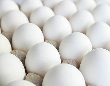 Jajka, drób i wieprzowina będą drożeć. Za zakaz stosowania GMO zapłaci...