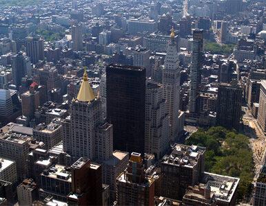Nowy Jork Mekką turystów. Rekordowe tłumy, rekordowe zyski