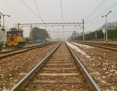 Zwłoki leżały na torach - maszynista zatrzymał pociąg