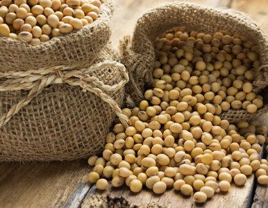 Sfermentowane produkty sojowe mogą zmniejszyć ryzyko śmierci