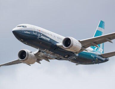 Jedna z popularnych linii lotniczych zmienia oznaczenia Boeingów 737...