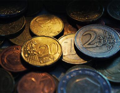 Lewandowski: pociąg strefy euro będzie odjeżdżał