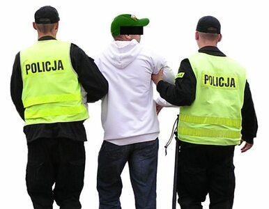 Polscy kibice zatrzymani w Czarnogórze