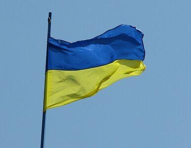 W walkach o Iłowajsk zginęło 459 żołnierzy ukraińskich