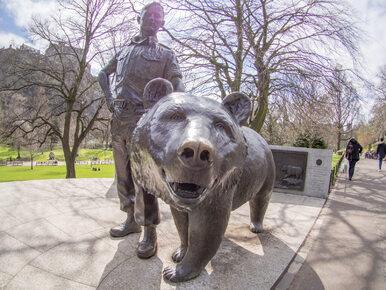 Niedźwiedź Wojtek z armii Andersa doczeka się własnego filmu