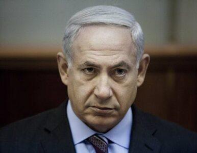 Świnie, wynocha z Izraela!