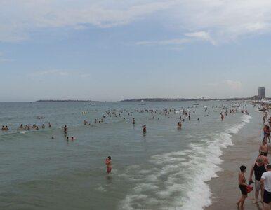 Glony straszą turystów na bułgarskich plażach