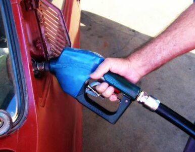 Lotos obniżył ceny paliwa. Zapłacimy mniej?